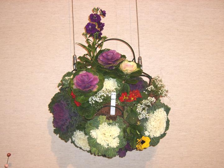 日本園芸協会に関するQ&A - Yahoo!知恵袋